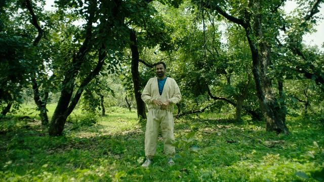 On This Beast That Is the Global Economy, Kal Penn visits a bee farm to learn about AI.
