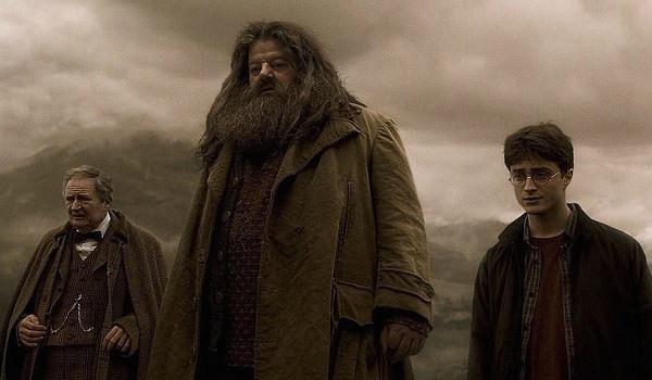 Harry Potter and the Half-Blood Prince's Hagrid looking sad