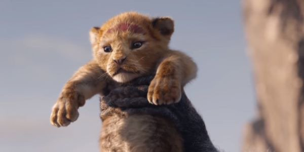 Simba being held up in The Lion King remake