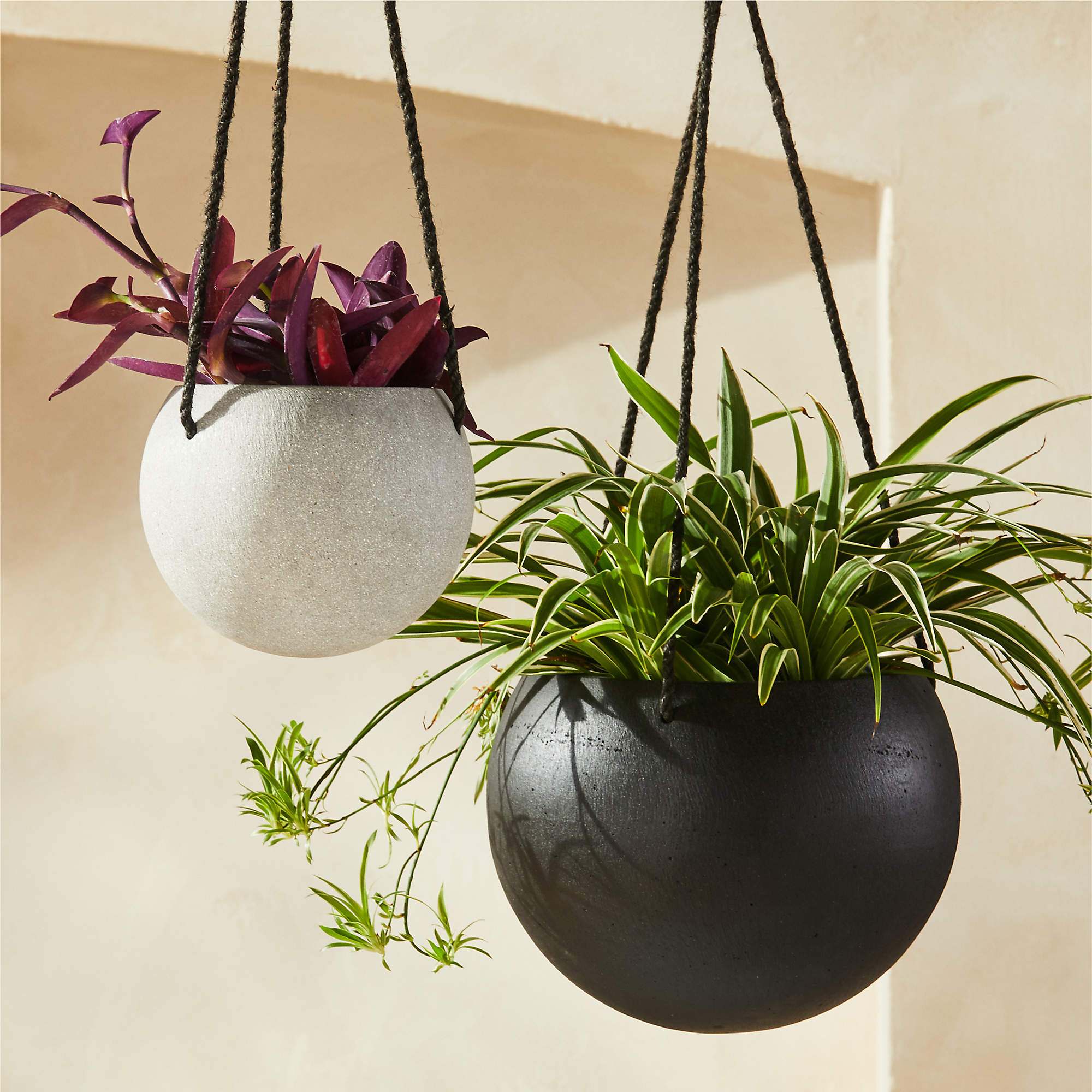 Image may contain: Sphere, Vase, Plant, Pottery, Potted Plant, Jar, and Planter